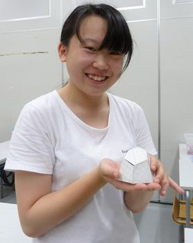 suzuki1a.jpg